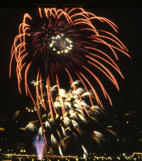 Firework2-300