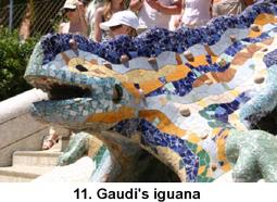 Iguana_2